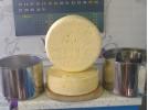 Сыр полученный с помощью пресса.